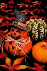 autumn-21601_640