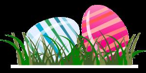 spring-48246_1280