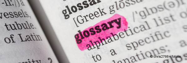 Online Glossaries