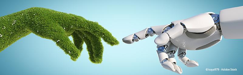 Künstliche Intelligenz + Umwelt