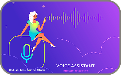 Voice Assistant
