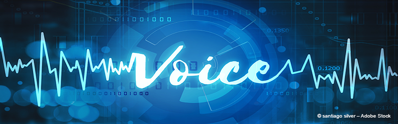 Voice Biometrics in Enterprise Security Systems